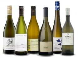Premium Sauvignon Blanc Probepaket 6 x 0,75L - 10% Rabatt