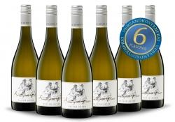 Oliver Zeter Sauvignon Blanc 2019 6er Paket FREI HAUS